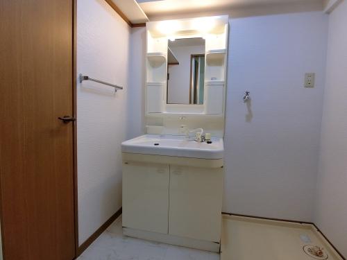 サンヒルズTAKEDAⅡ / 301号室洗面所