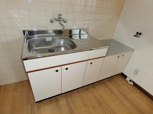 コーポ上野 / 201号室キッチン