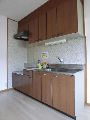 ラフィーネ篠栗 / 401号室キッチン