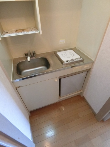 プレデュパルク壱番館 / 301号室キッチン