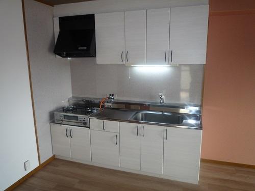 リヴェール伊賀Ⅱ / 201号室キッチン