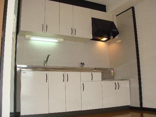 アイビーハイツⅡ / 203号室キッチン
