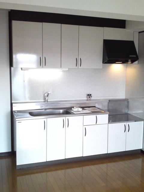 アイビーハイツⅡ / 402号室キッチン