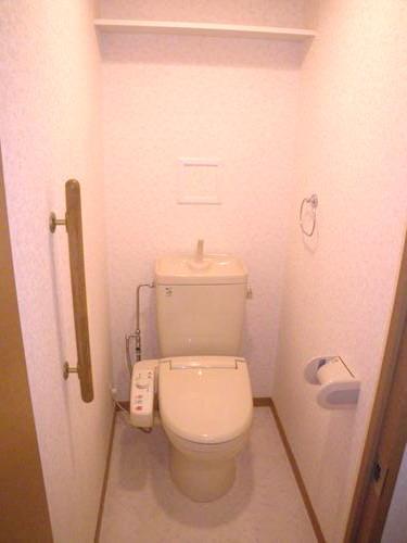 カンフォーロ藤木 / 202号室トイレ