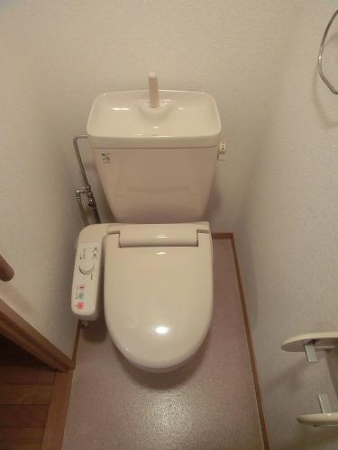 カンフォーロ藤木 / 203号室トイレ