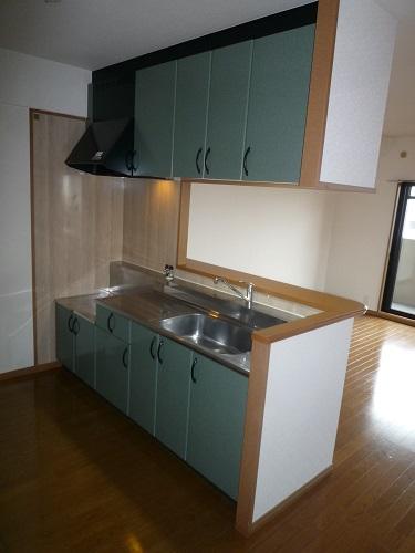 グリシーヌ空港 / 501号室キッチン