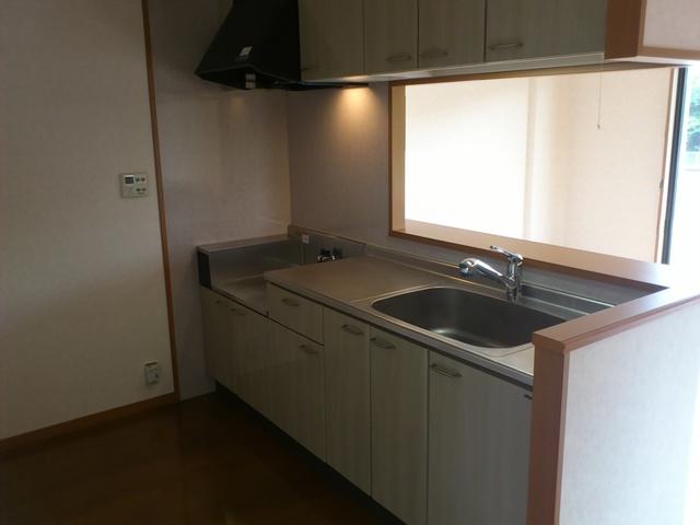 ルミエール21 / 301号室キッチン