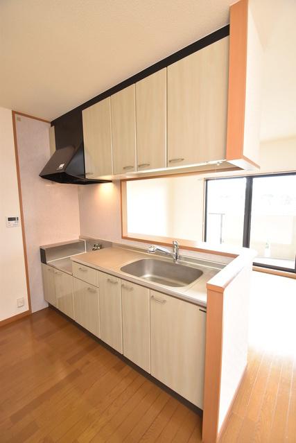 ルミエール21 / 503号室キッチン