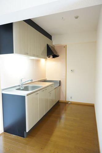 シングレート・ヒルズ / 301号室キッチン