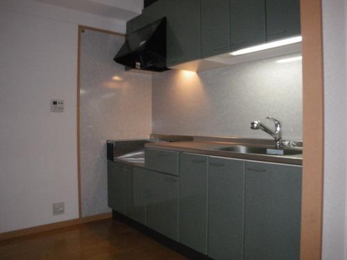 チュリス空港東 / 402号室キッチン