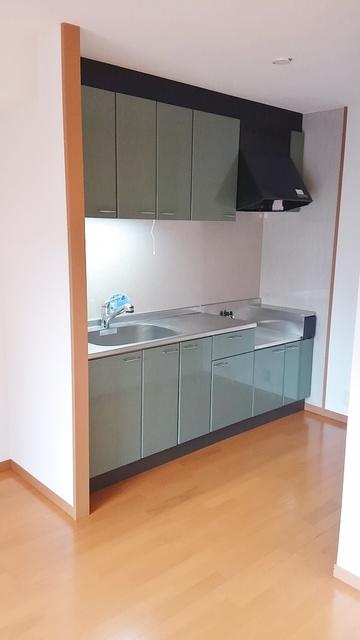 ネオパレス長者原Ⅱ / 301号室キッチン