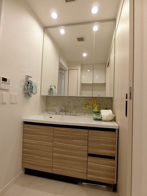 ネオグレイス吉塚 / 1301号室洗面所