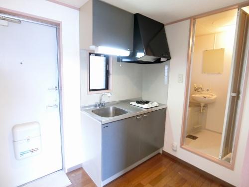 ルミエール原田 / 205号室トイレ