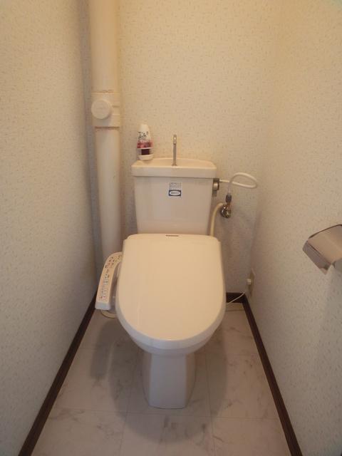 Amenity丸善 / 503号室トイレ