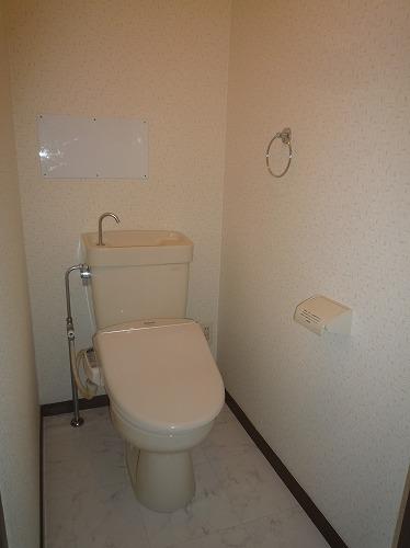 コープセンタービレッジ / 203号室トイレ