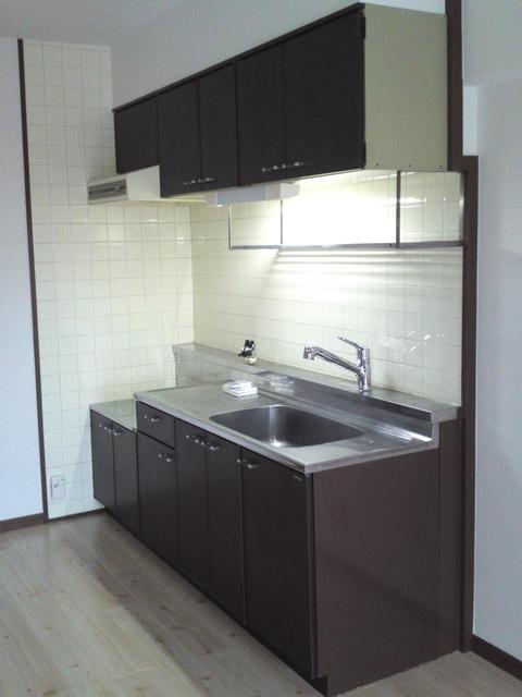 エクセレント田口 / 303号室キッチン