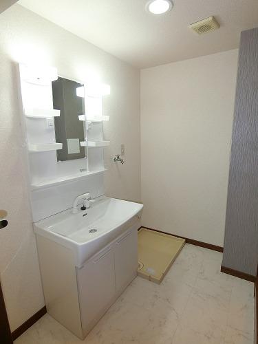 エクセレント田口 / 402号室洗面所