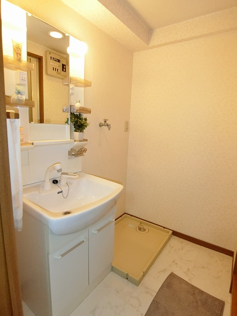 グランベルデ丸善 / 405号室洗面所