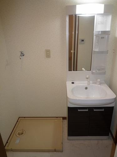 グランベルデ丸善 / 503号室洗面所