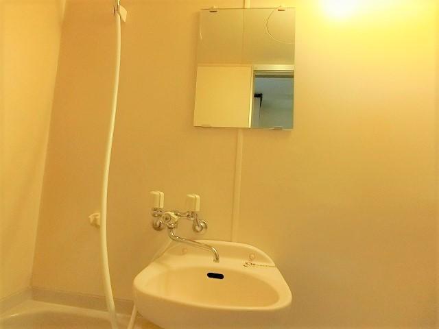 ルミノスコート / 206号室洗面所