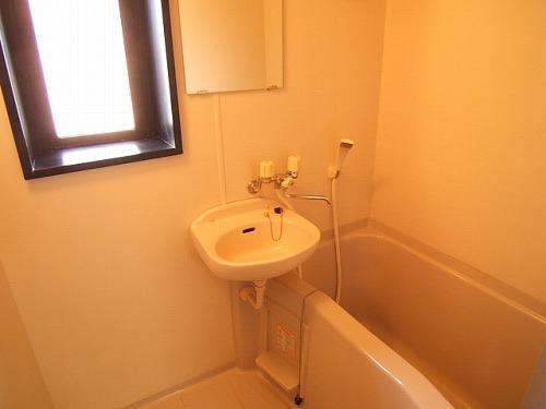 ルミノスコート / 805号室洗面所