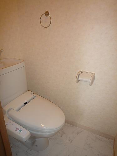 アスティオン中島 / 301号室トイレ