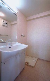 アスティオン中島 / 405号室洗面所