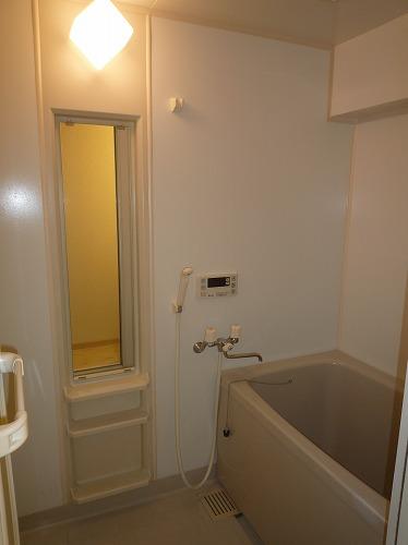 リバーランドⅥ / 401号室洗面所
