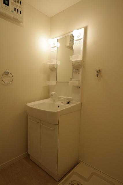 テゾーロカーザ / 202号室洗面所