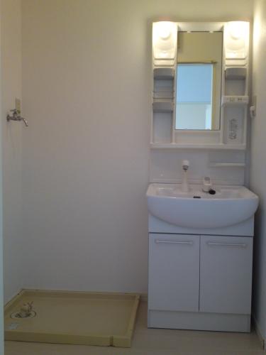 メロディーハイツ / 101号室洗面所