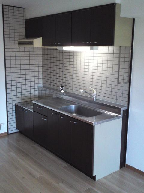 エクセル工藤 / 205号室キッチン