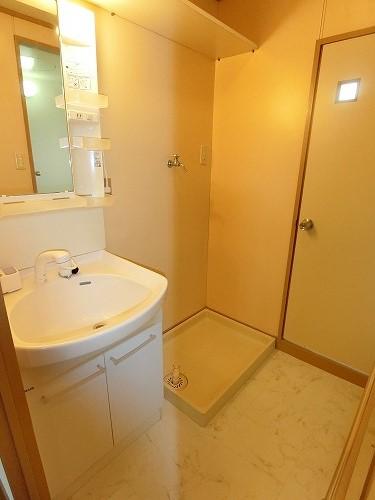 アイビーハイツ / 203号室洗面所