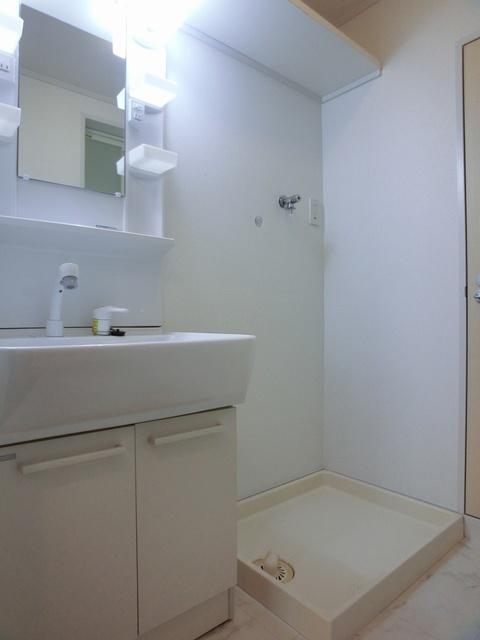 アイビーハイツ / 303号室洗面所