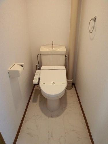 リバーサイド志免 / 301号室トイレ