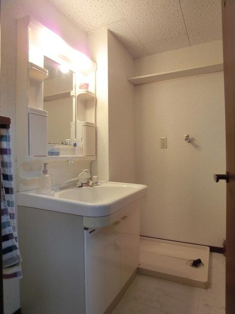 博多の森南 / 206号室洗面所