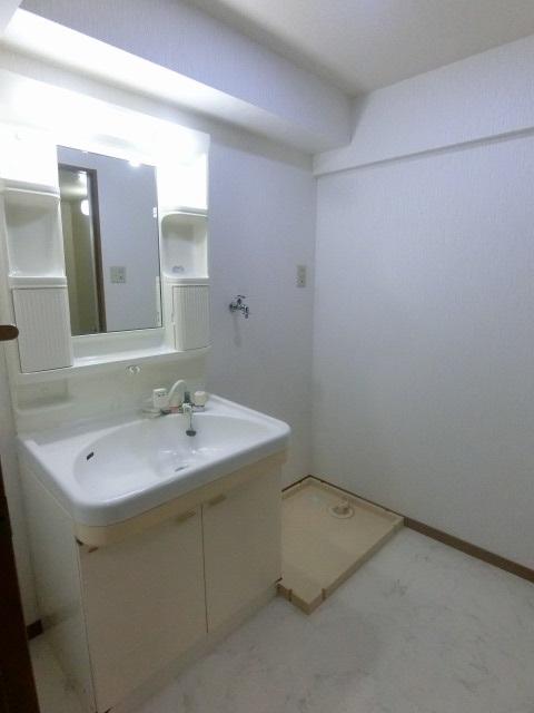 サンヒルズTAKEDAⅡ / 201号室洗面所