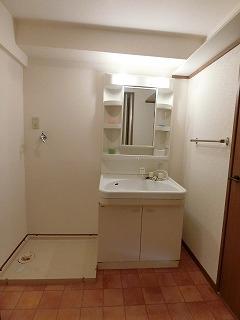 サンヒルズTAKEDAⅡ / 402号室洗面所