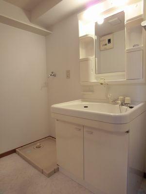 グランコート / 203号室洗面所
