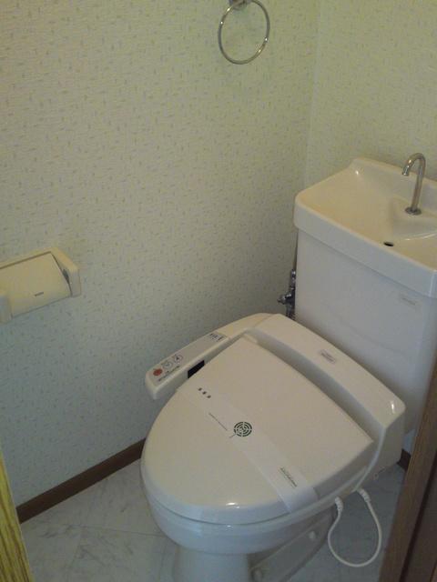 フラワーハイツ長者原 / A-102号室トイレ