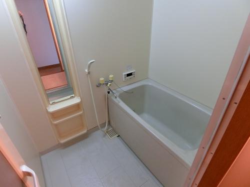 カーサ宮の前 / 203号室洗面所