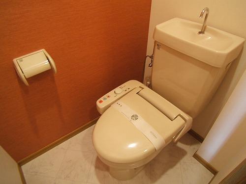 プレデュパルク壱番館 / 203号室トイレ