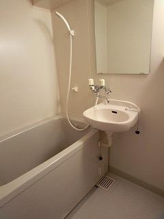 プレデュパルク壱番館 / 406号室洗面所