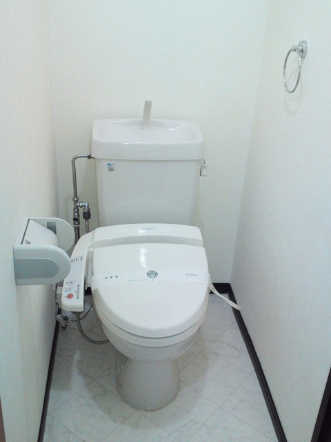アイビーハイツⅡ / 301号室トイレ