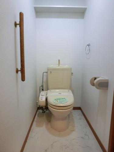 カンフォーロ藤木 / 201号室トイレ