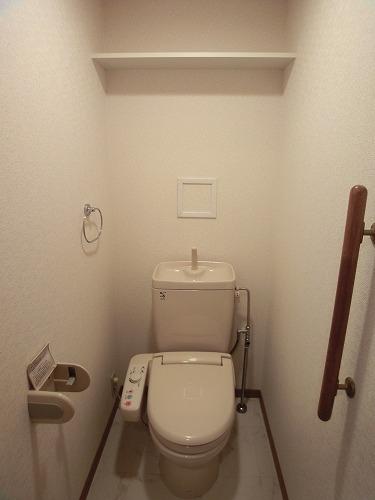 カンフォーロ藤木 / 302号室トイレ