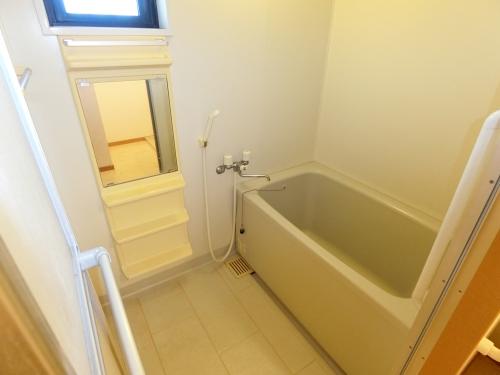 カンフォーロ藤木 / 403号室洗面所