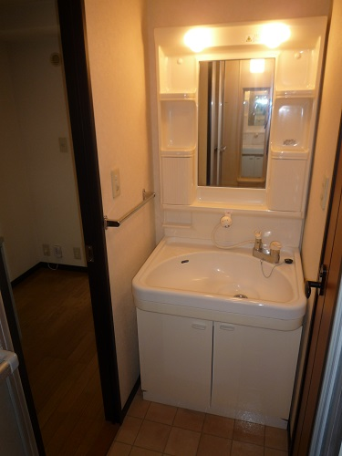 スクレーパー東 / 401号室洗面所