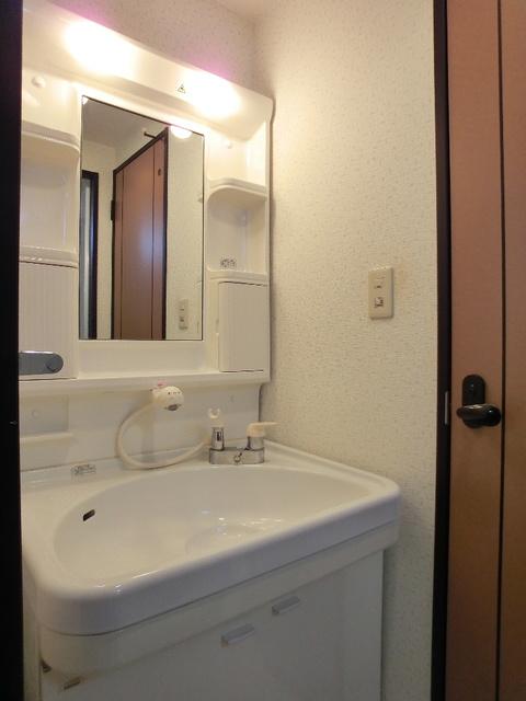 スクレーパー東 / 403号室洗面所