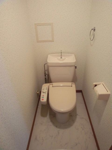 ピオーネテラス空港南 / 301号室トイレ