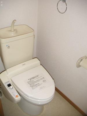 ルミエール21 / 502号室トイレ
